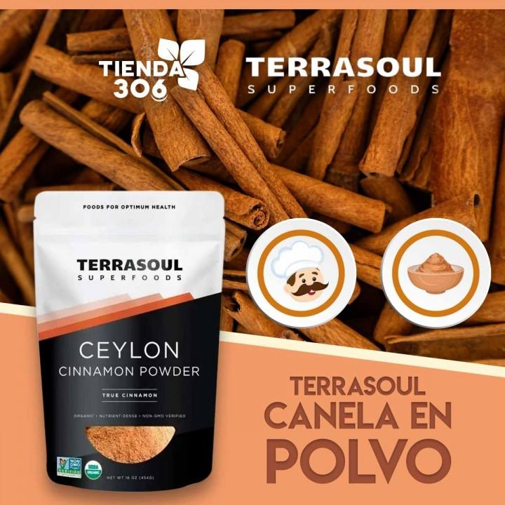 TERRASOUL Canela en Polvo de Ceilan USDA ORGANIC 16 Oz (454G) D1162 TERRASOUL