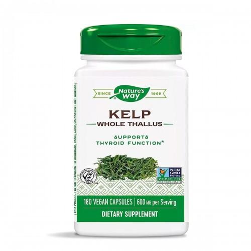 Kelp Algas Yodo Natural Natures Way Quelpo 600 mg 180 Cápsulas Veganas V3022 Nature's Way
