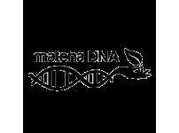 Matcha DNA